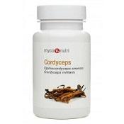 Cordyceps huby 60kps